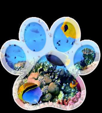 04-podwodny-swiat