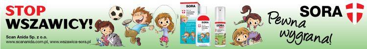 SORA_750x100
