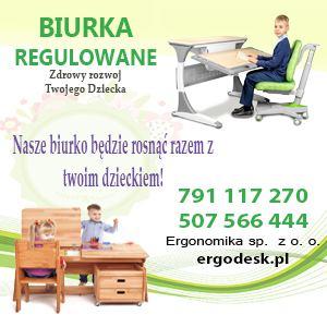 Ergodesk_2