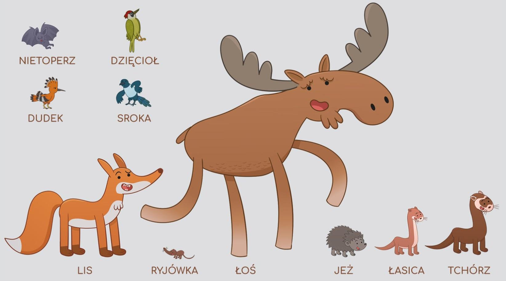 Poznawaj las z Żubrem Pompikiem_zwierzęta