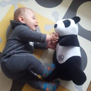 Panda 1 (002)