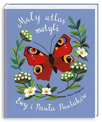 maly-atlas-motyli