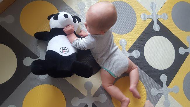 Panda 3 (002)