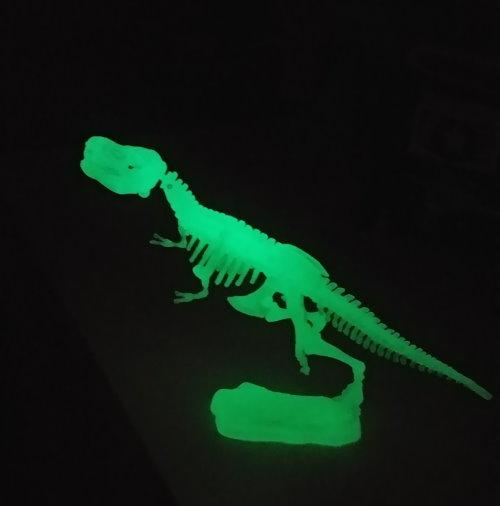 dinozaury_5